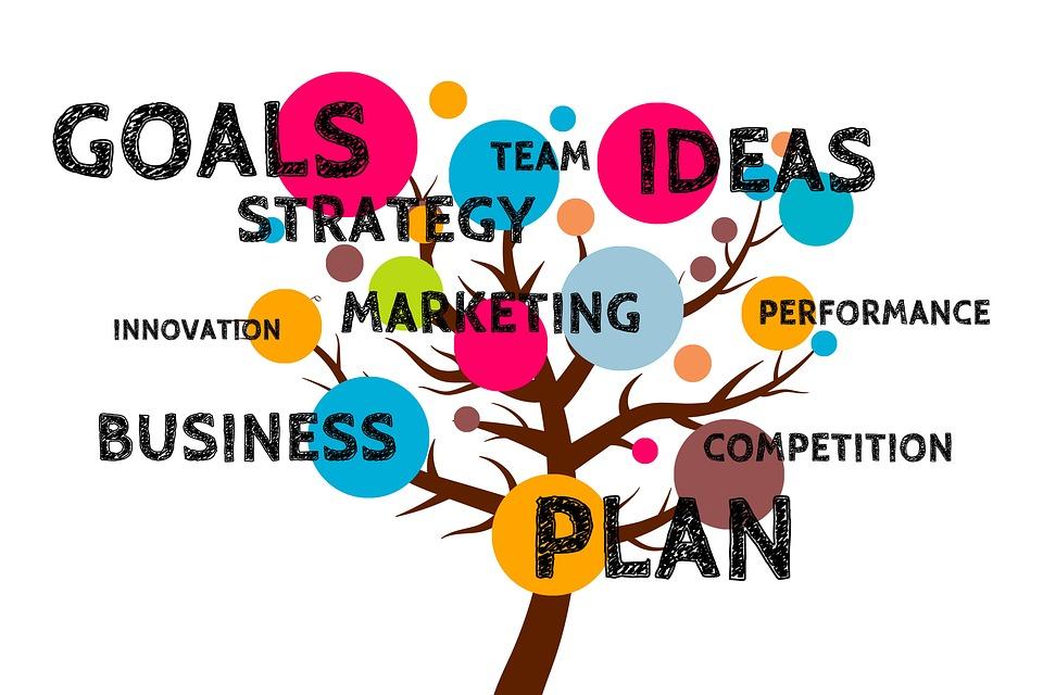 Biznes plan (Projektor Kariery)